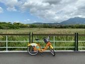台北:關渡自然公園46.jpg