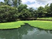 花蓮:馬太鞍濕地2.jpg