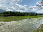 台北:關渡自然公園35.jpg
