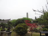 中國2:溫州江心嶼33.JPG