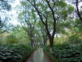 福州:百花洲2.jpg
