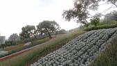 台北:三層崎公園7.JPG