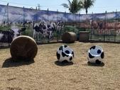 屏東:屏東熱帶農業博覽會6.JPG