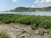 台北:關渡水岸公園33.JPG