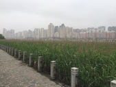 中國2:溫州江心嶼40.jpg