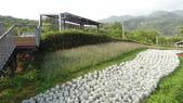 台北:三層崎公園15.JPG