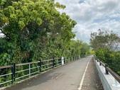 台北:關渡自然公園37.jpg