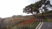 台北:三層崎公園2.JPG