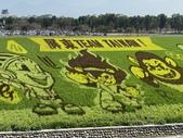 屏東:屏東熱帶農業博覽會15.JPG