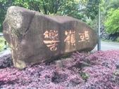 中國2:朴格大酒店1.jpg
