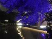 中國2:白鹿州南塘河22.jpg
