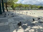 台北:關渡水岸公園21.JPG