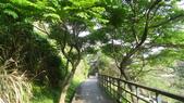 台北:貴子坑水土保持教育園區7.JPG
