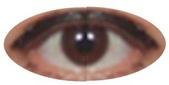 士林大鼎肉粳:眼睛100.06.06-81.jpg