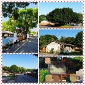 10801-05 第1學期教學札記:PhotoGrid_1568798239581.jpg