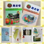 106 學年度教學相關照片:PhotoGrid_1504658106434.jpg