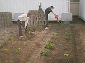 香草姐的快樂花園(過去式):2009121401.jpg