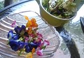 香草姐的快樂花園(現在式):b20171203-9.jpg