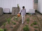 香草姐的快樂花園(過去式):2010012101.jpg