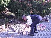 香草姐的快樂花園(過去式):2009121002.jpg