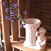 香草姐的快樂花園(過去式):2010012704.jpg
