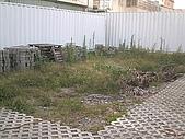 香草姐的快樂花園(過去式):2009120601.jpg