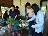 香草姐的快樂花園(現在式):b20171203-3.jpg