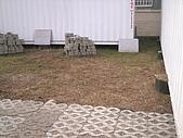 香草姐的快樂花園(過去式):2009120802.jpg