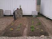 香草姐的快樂花園(過去式):2009121601.jpg