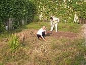 香草姐的快樂花園(過去式):2010091501.jpg