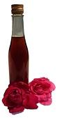 香草姐的快樂花園(現在式):玫瑰酒fs.jpg
