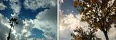 貼文裡的圖片:雲景f.jpg