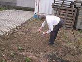 香草姐的快樂花園(過去式):2010010403.jpg