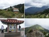 網誌四格圖:太魯閣、合歡山之旅---(二) 碧綠神木、大禹嶺 & 合歡山;武嶺