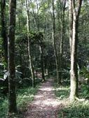 旅遊.景點(二):宜蘭 拳頭姆步道
