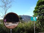 旅遊.景點(二):樂山林道望 樂山(鹿場大山)