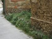 旅遊.建築(二):芎林 卵石砌牆