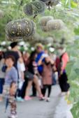 20160229屏東熱帶博覽會:H08A8548.JPG