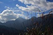 20151114奇萊南峰.南華山:HSU_0380.JPG