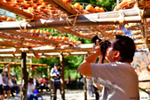味衛佳柿餅季:20171007_4071.jpg