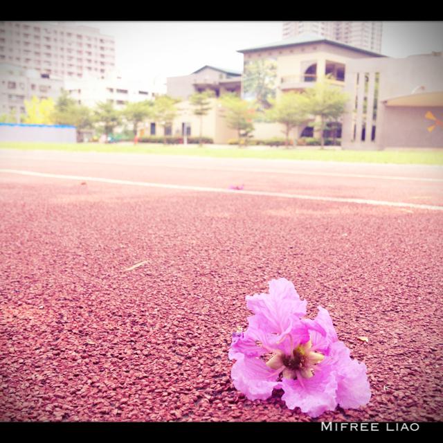 ♥ 2012♥小生活♥ :life_2012051202.PNG