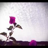 ♥ 2012♥小生活♥ :life_2012042203.PNG