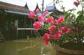 i ♥ Bangkok:Amphawa_64780004.JPG