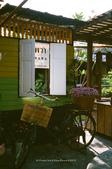 i ♥ Bangkok:Amphawa_64780012-1.jpg