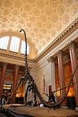 美國紐約舊金山 DAY7 自然歷史博物館+中央公園:017.jpg