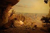 美國紐約舊金山 DAY7 自然歷史博物館+中央公園:020.jpg