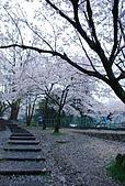 關西の百選春櫻饗宴 DAY2 京都 080407:蹴上インクライン