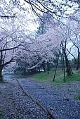 關西の百選春櫻饗宴 DAY2 京都 080407:蹴上鉄道