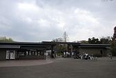 關西の百選春櫻饗宴 DAY2 京都 080407:府立植物園