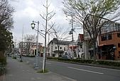 關西の百選春櫻饗宴 DAY2 京都 080407:京都市北區